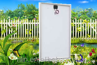 High quality low price Chinese ningbo18V150W poly solar panel