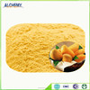 organic fruit powder, mango fruit powder