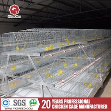 super broiler / layer / pullets chicken cage for sale