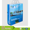 Professional service customized design printing plastic reusable shopping bag with logo