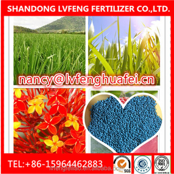 Manufacture and exporter of Complex fertilizer NPK blue granular 12-12-17 +2MgO +TE