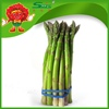 100% organic bulk Green Asparagus frozen vegetables for sale