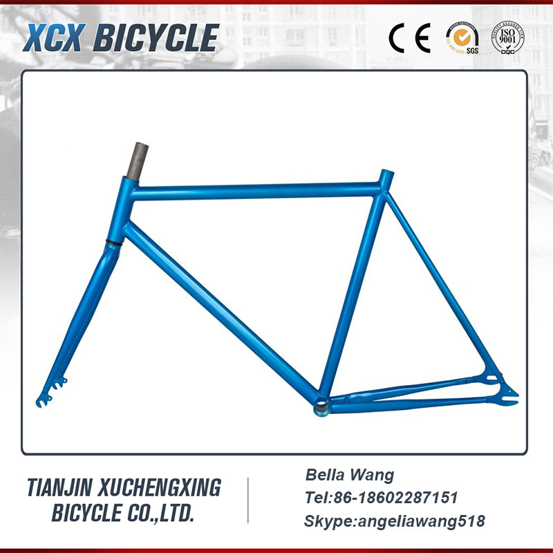 Classic Fixed Gear Road Bike Frame