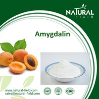 Anti-cancer Vitamin B17 Power Aricot kernel extract with high quality Amygdalin