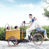 CE Holland bakfiets family 6 speed 3 wheel cargo reverse trike motorcycles factory