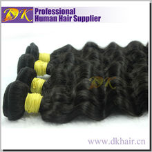 Hot Wholesale High Quality Natural virgin indian hair curly
