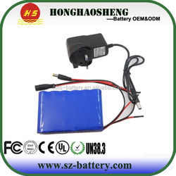 Great battery supplier electric vehicle 20Ah 12v lithium ion car battery