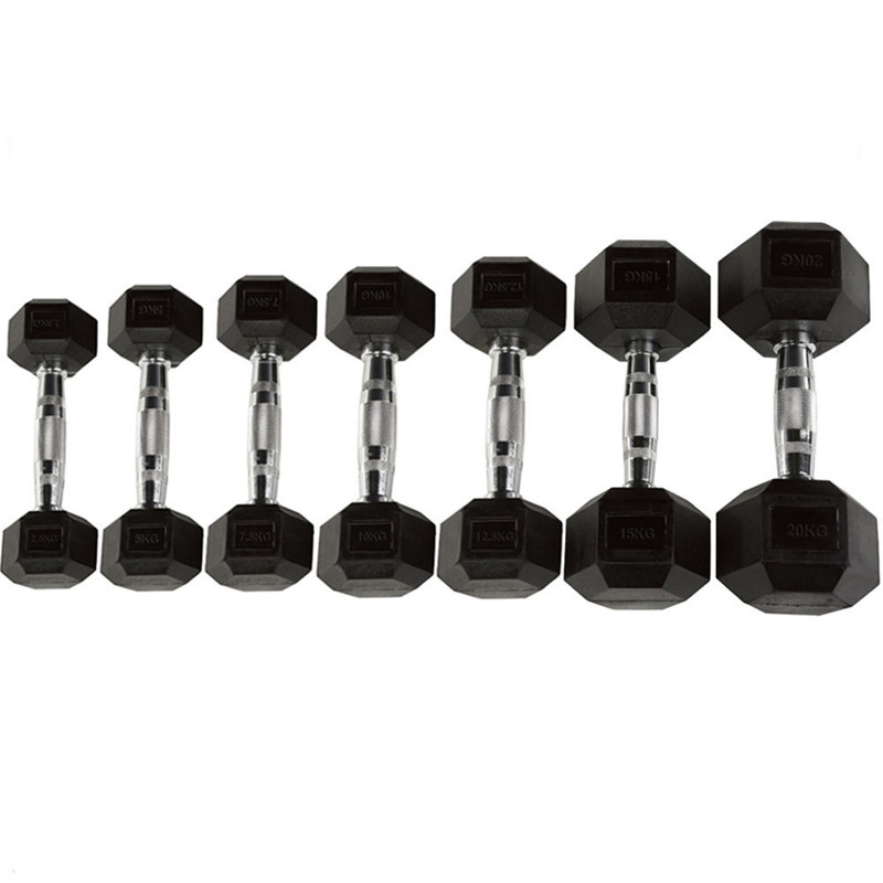 Home Fitness Gym Hex Rubber Coated Dumbbells Weight Set