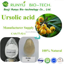 Anti-oxidant Loquat Leaf extract, Ursolic Acid 25%-98% HPLC by fast shipping