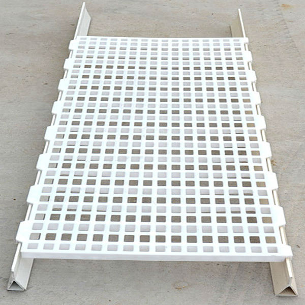 Plastic chicken Slat with supporting legs for chicken house