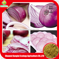 100% Natural quercetin from Onion extract