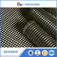 Road Reparation Reinforcement Geogrid