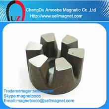 Rare Earth Magnetic
