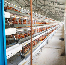 Dar es salaam Tanzania Layer Poultry Farm Chicken Cage For Sale