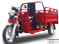 Three wheel motor cargo with 150cc 175cc 200cc or 260cc
