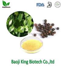 Herbal extract type black pepper extract piperine 95% with free sample