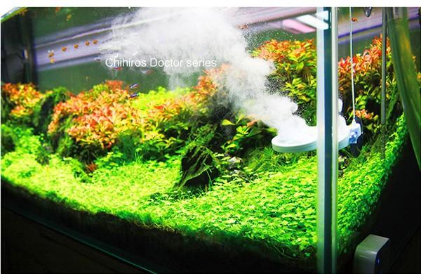 aquarienanlage tank nano tank garnelen tank chihiros arzt algenentferner algen killer aquarium. Black Bedroom Furniture Sets. Home Design Ideas