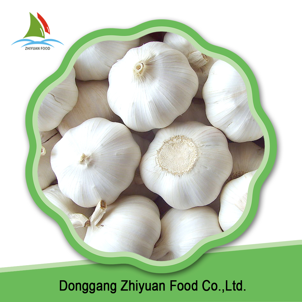 China bulk wholesale pure white fresh garlic on sale