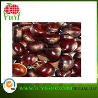 China Organic Snacks Chinese Cheap Chestnut