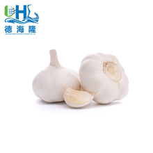 Natural white 2017 new fresh garlic