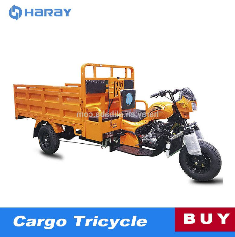 Open Air Cooled 200cc Engine Motor Cargo Trike
