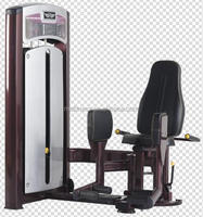 hot sale Gym equipment/S8-019 Outer Thigh Abductor
