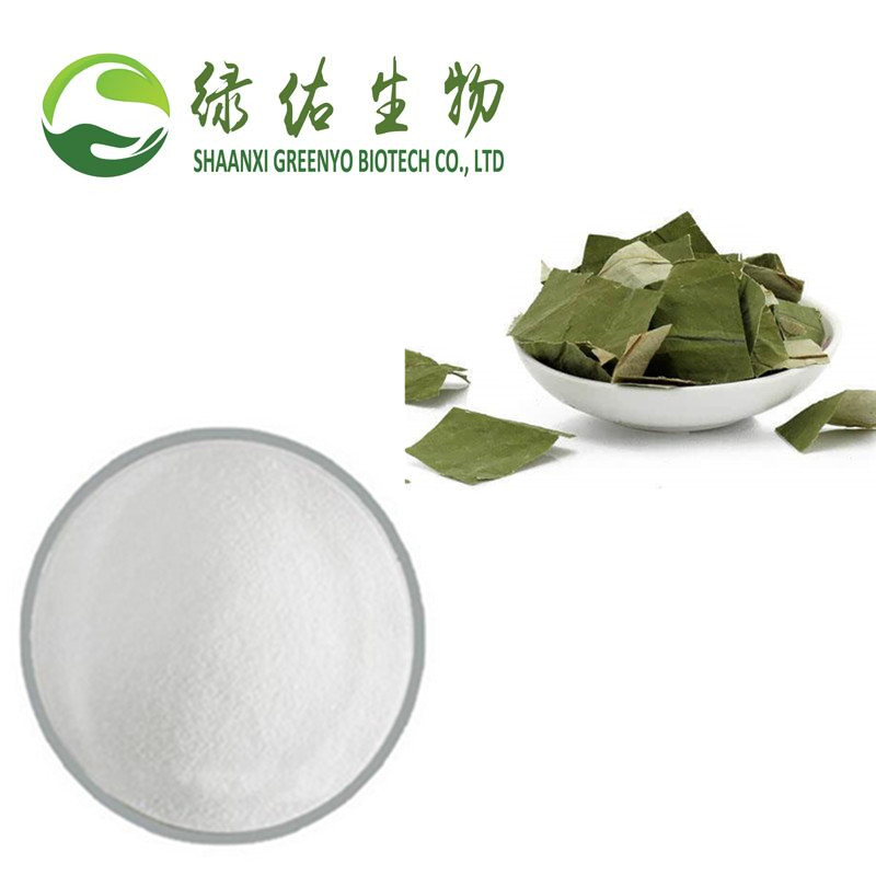 Lose Weight Nuciferine/Lotus Leaf extract /475-83-2 with wholesale price