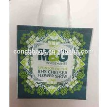 Professional leading recycled pet bottles non woven bag with CE certificate
