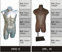 male upper body headless / armless mannequin