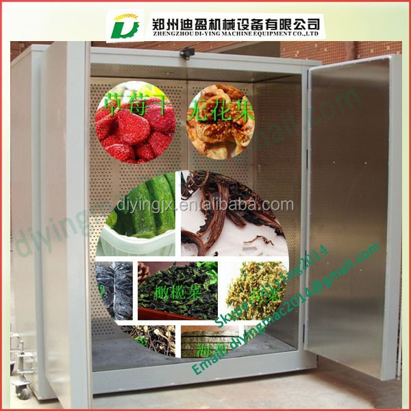Small type hot sale fruit & vegetable drying machines/Fruit and Vegetable Dryer