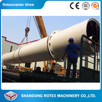 China Famous Manufacturer Rotary Wood Shaving Dryer Best Price