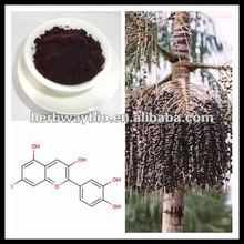 best quality Acai Berry Extract,pure Acai berry Extract 4:1,Acai Berry extract Anthocyanidins