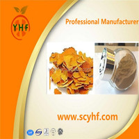 High Quality Citrus Fruit Extract in Bulk Stock
