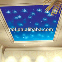 Twinkle clear fiber optical ceiling light , starry ceiling light led light