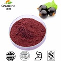 Factory Supply Natural Blackcurrant Extract Anthocyanidins Black Currant Extract