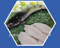 Frozen Channel Catfish fillets