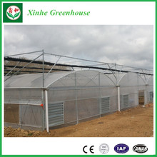 Plastic Poly Film Greenhouse