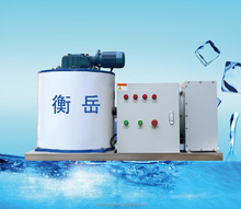 500kg daily output fishery equipments piece icemaker machine with CE