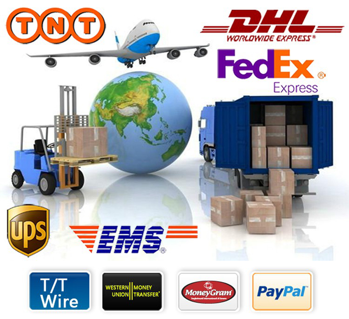 add shipping pay By <strong>DHL</strong>