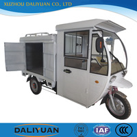 DLY cargo handicap electric vehicle mini electric vehicle