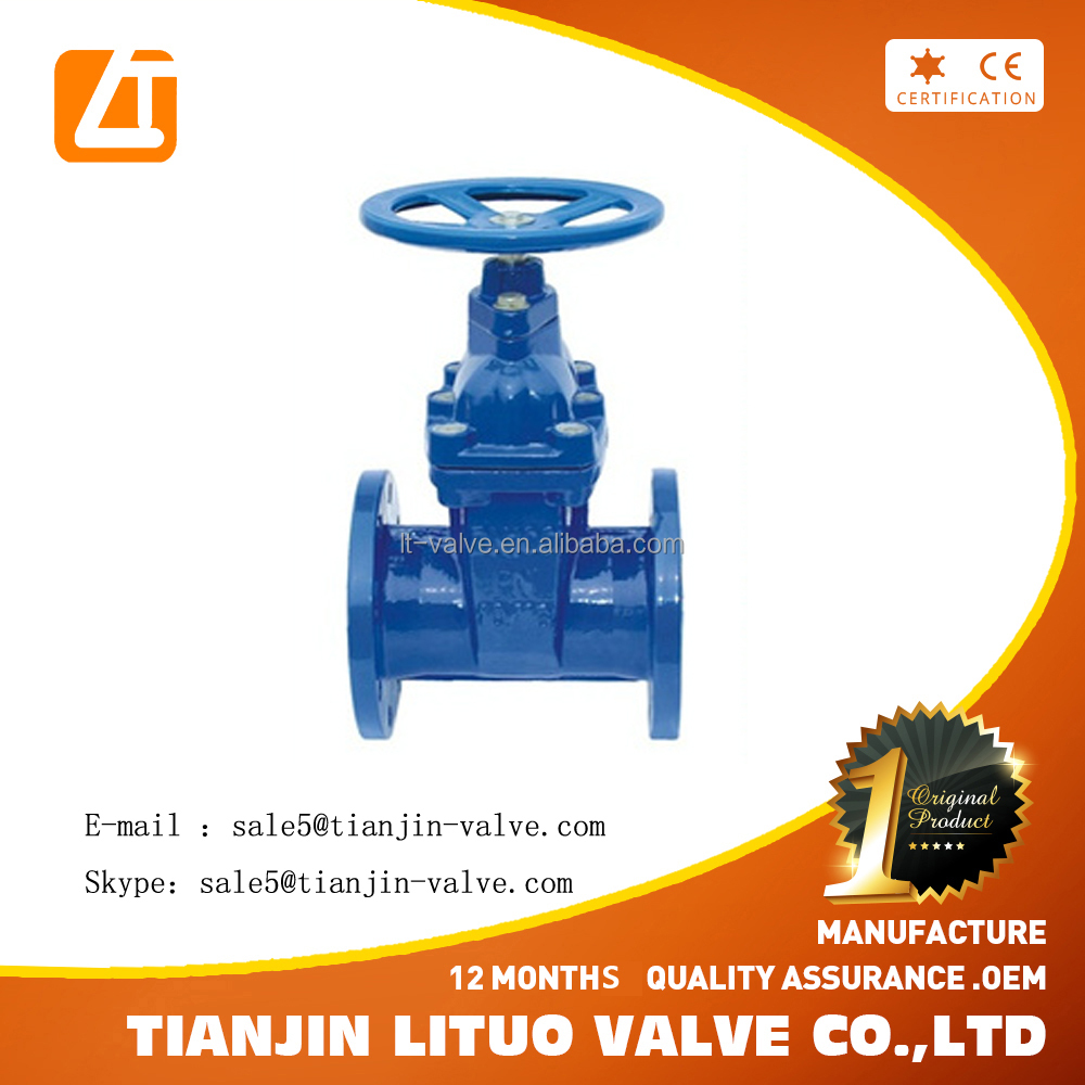Gate and seat ring for gate valve PN 50-600