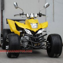 Racing 250cc ATV