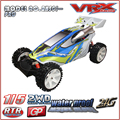 Large scale 1/5th 2WD off road Electric RC Car in Radio Control Toys