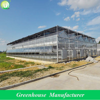 modern commercial greenhouse