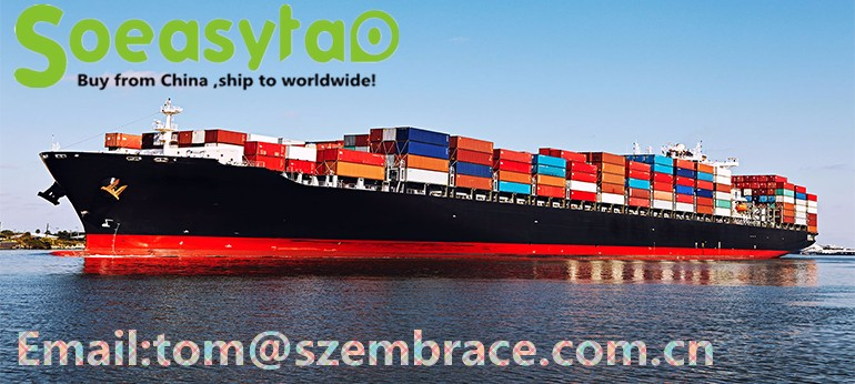 sea freight services from Shenzhen port China to Riyadh Saudi Arabia
