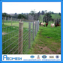 Safe Wire Mesh Pasture and Grassland Fence/ Metal Goat Corral/ High Tensile Wire