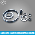 ISO Silicon carbide ceramic seal ring