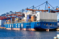 international sea freight forwarder to Namibia from qingdao China /sea shipping from China