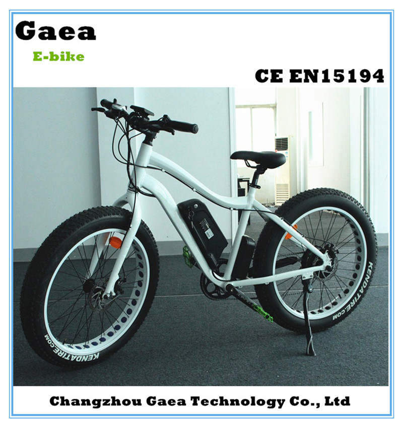 electric bike conversion kit with battery electric fat bike 48v 1000w