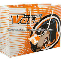 Tennessee Volunteers Horizontal fashion show gift bags